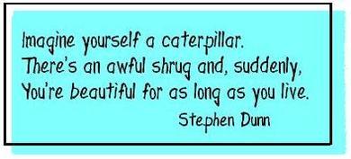 Caterpillar_3